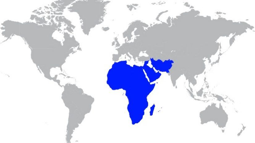 grey world map highlighting Middle East and Africa in blue
