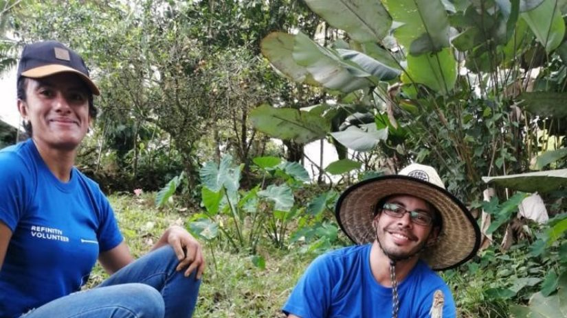 Refinitiv employees tree planting in Costa Rica