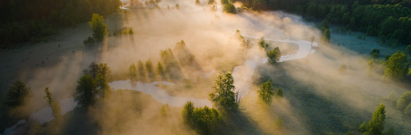 Dawn light breaks through low lying mist over green landscape with river and trees