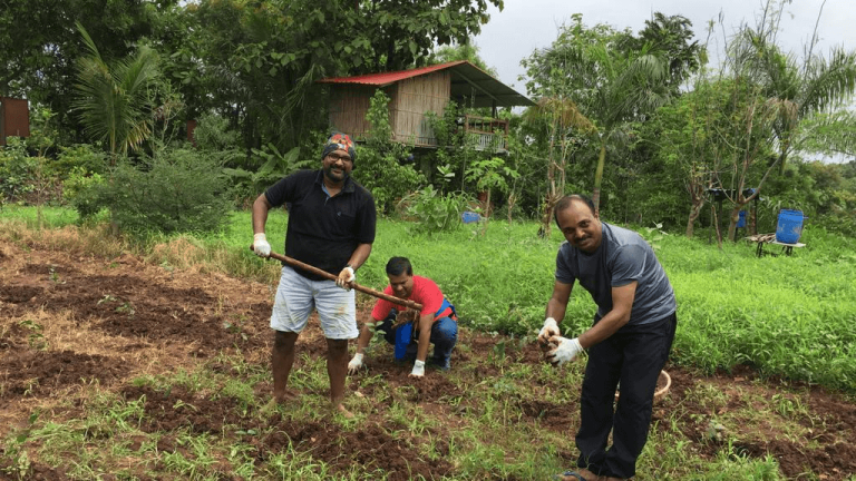 Three Refinitiv employees planting saplings on a farm.