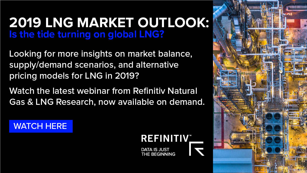 2019 LNG Market Outlook. Is the LNG market turning in 2019?