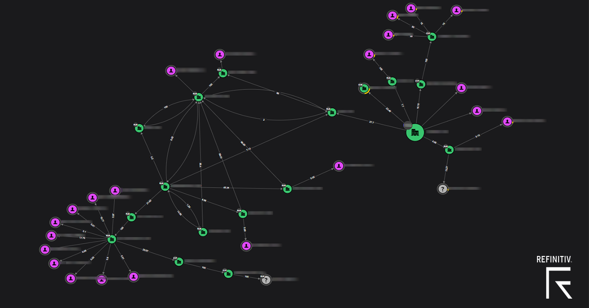 An example of a complex ownership network involving many individuals and companies
